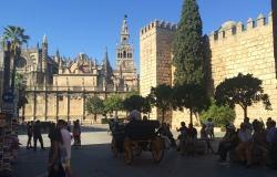 Seville -  Plaza de Triunfo